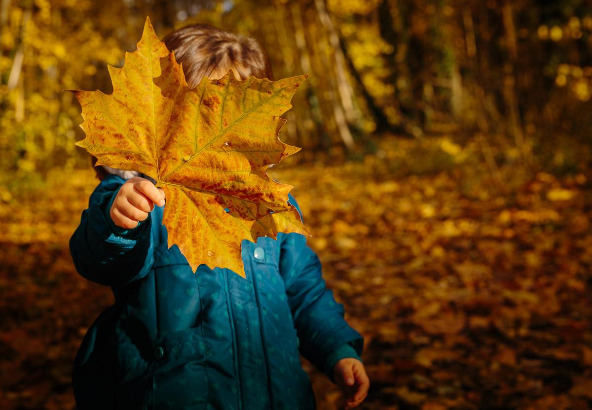 seance photo famille automne photographe enfant parc de sceaux antony haut de seine feuille